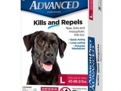 5 BEST DOG FLEA TREATMENT REVIEWS FOR 2021 (BUYING GUIDE)